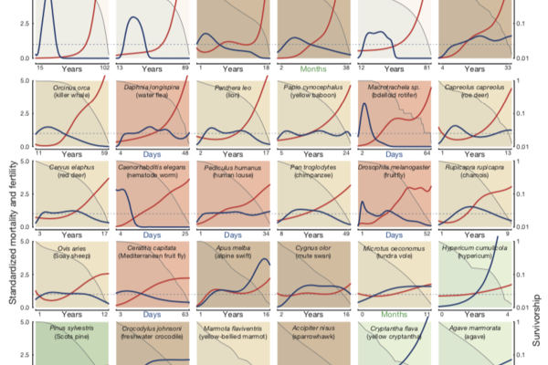 diversity of ageing trajectories across 48 animal plant and brown alga species jones et al 2014 nature